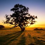 Wetter Australien