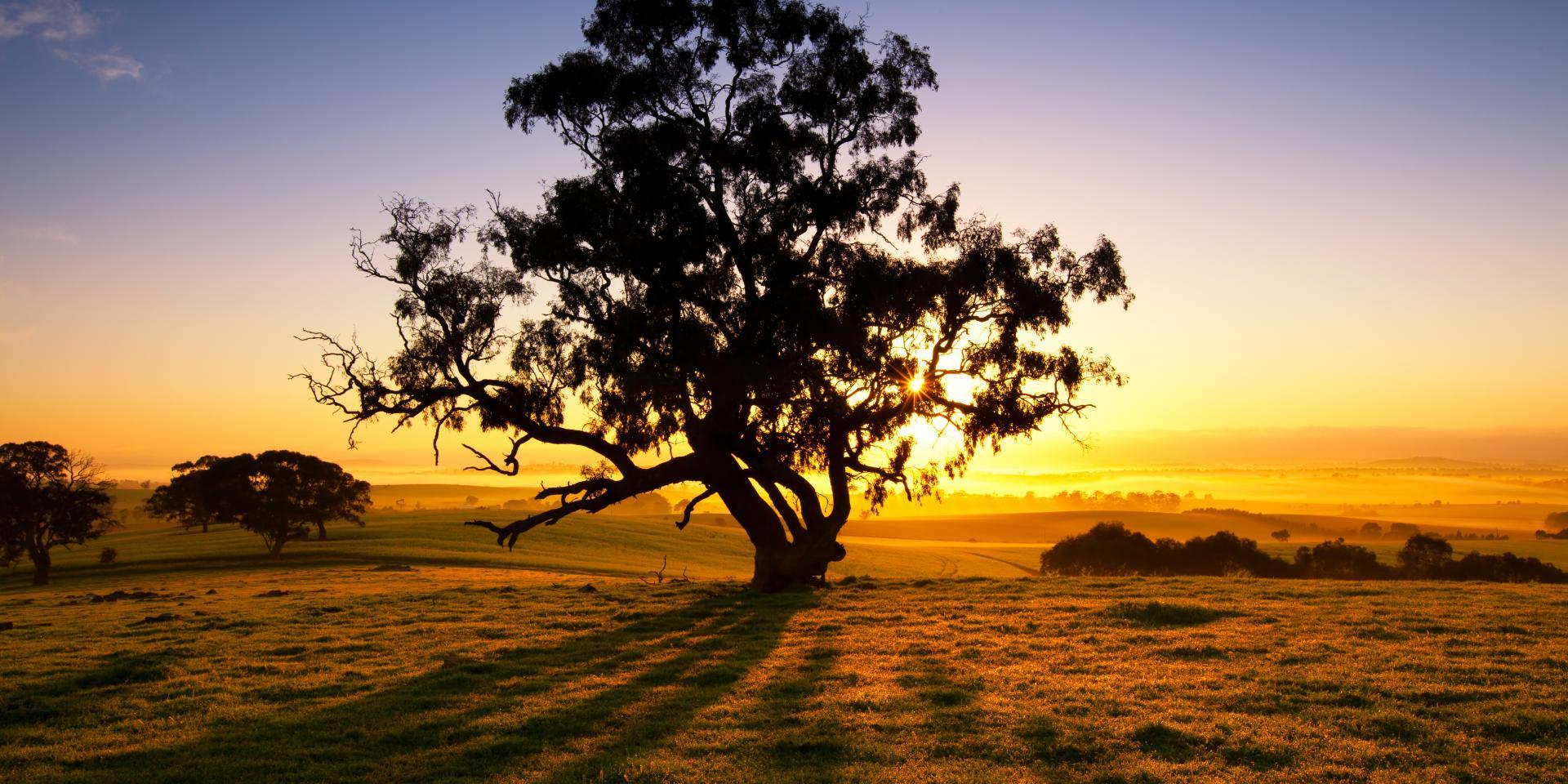 Karte Australien Und Umgebung.Das Wetter In Australien So Unterschiedlich Ist Das Klima