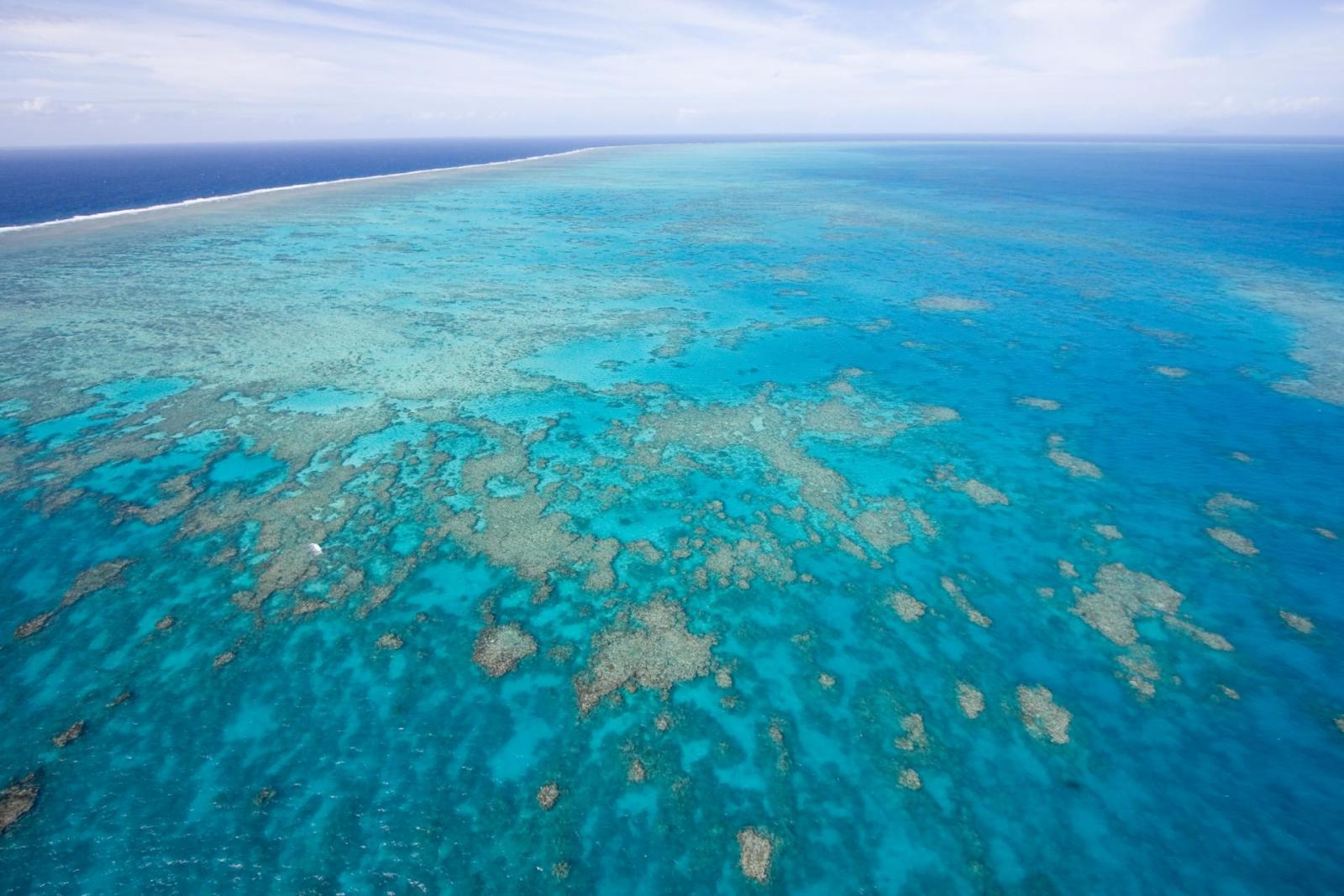 Must Do Great Barrier Reef Fallschirmsprung
