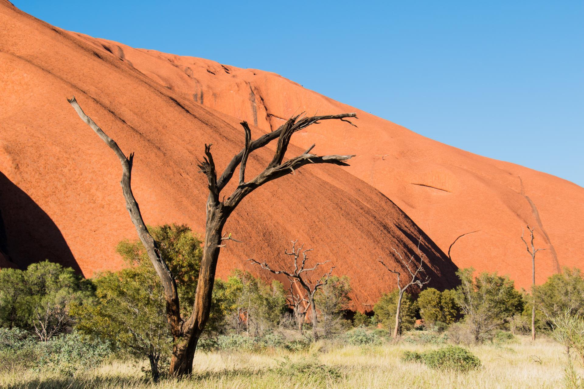 Uluru Ayers Rock Australien