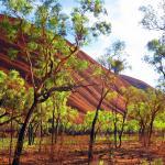 Wetter Australien Uluru Australien Ayers Rock