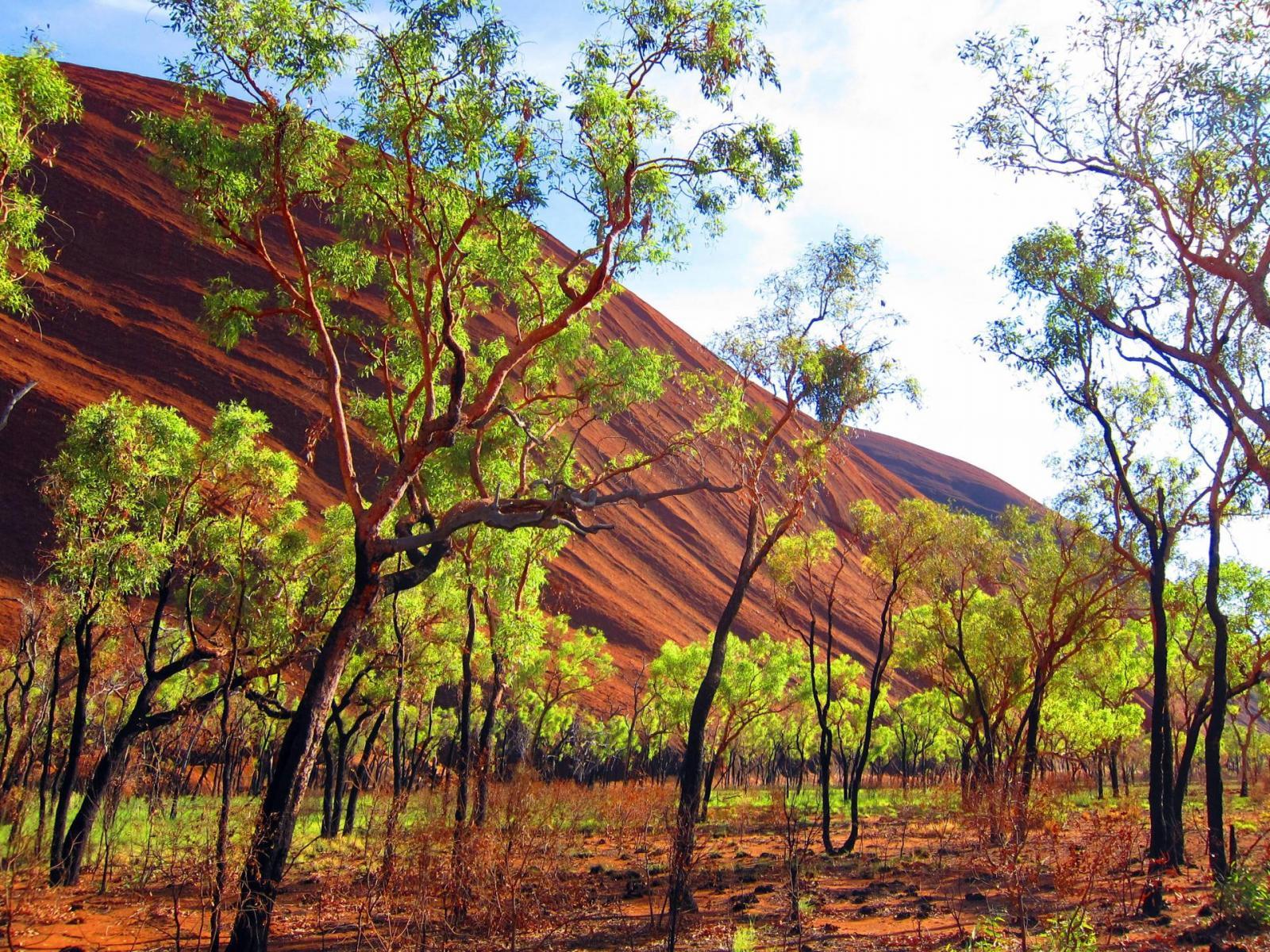 Helikopterflug Uluru Australien Ayers Rock
