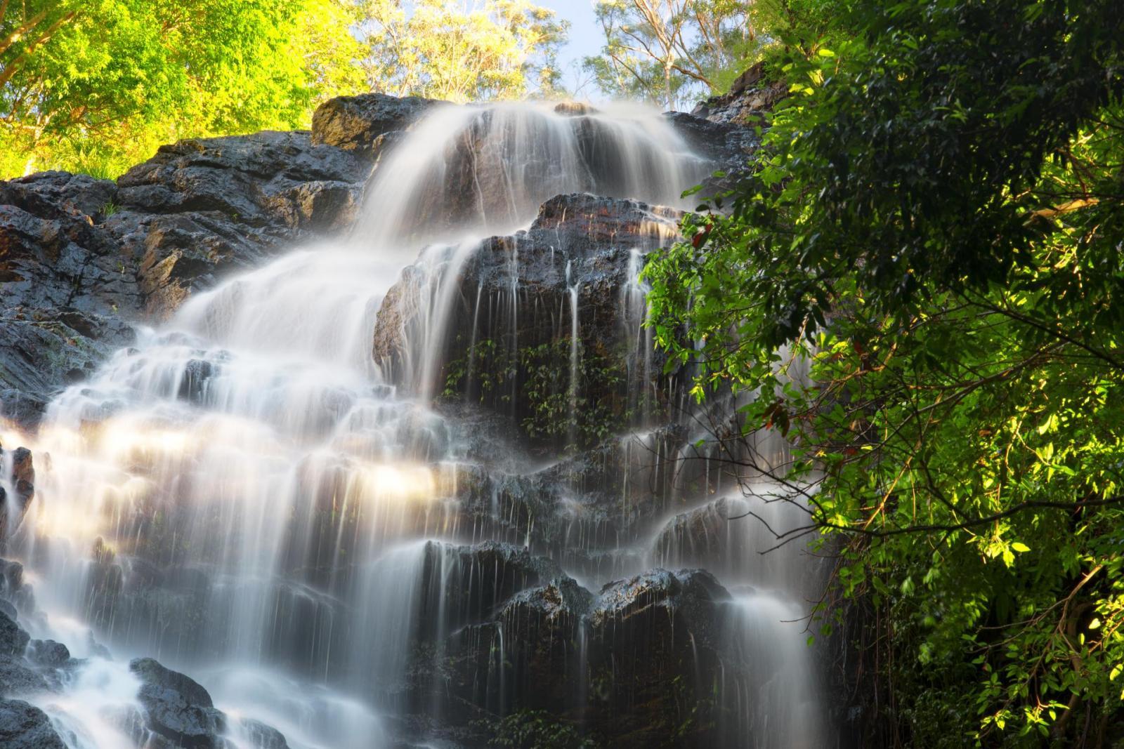 Kondalilla Wasserfall Regenwald Queensland Australien