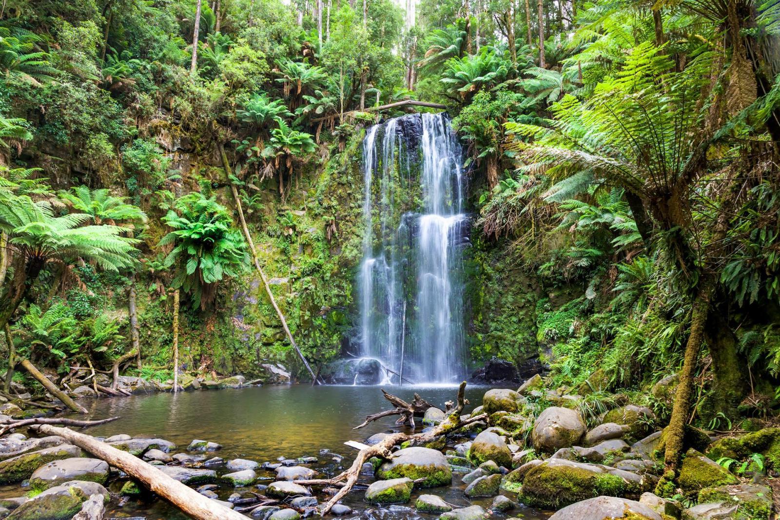 waterfall-tasmania-rainforest-tas-161004204733029