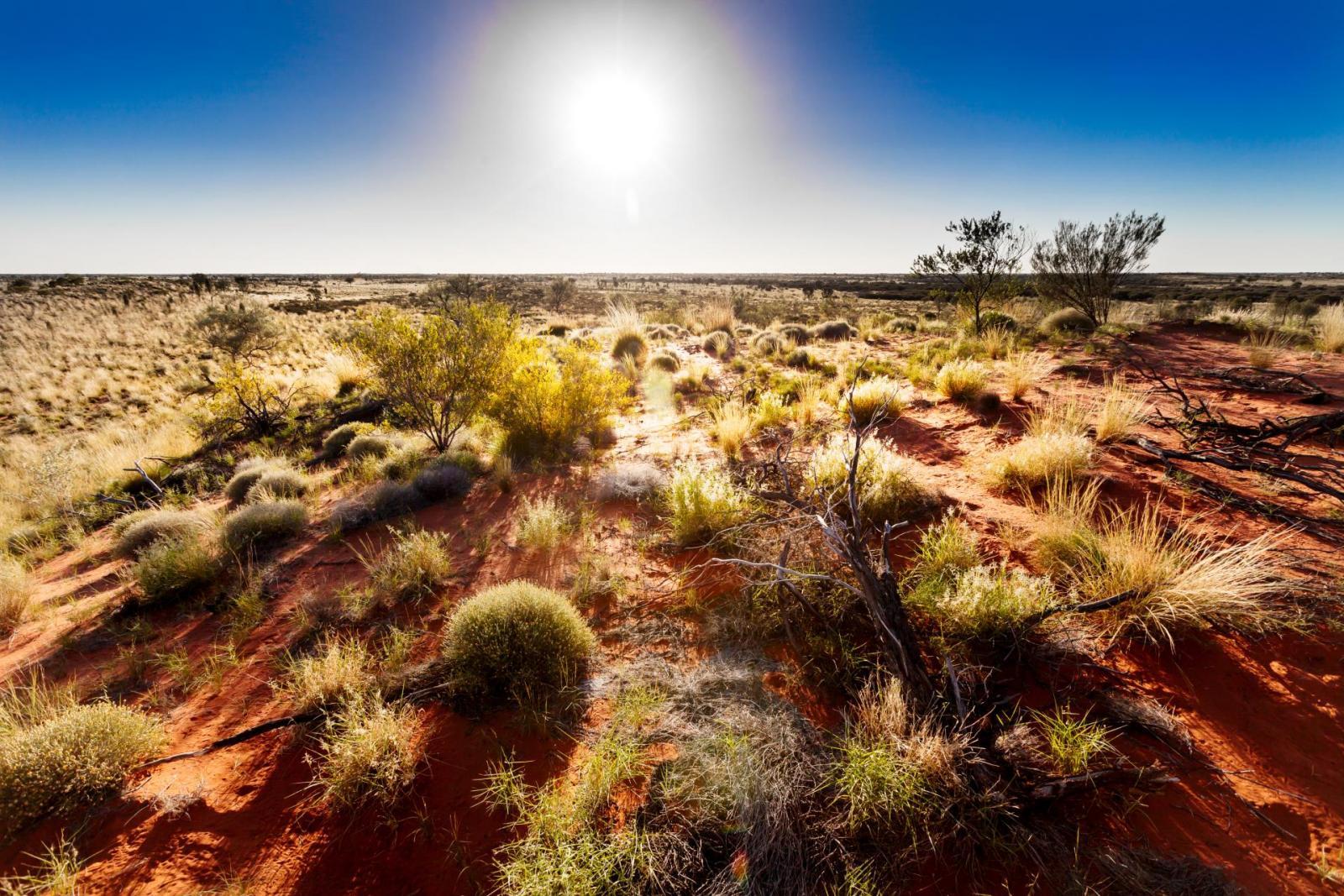 Beste Reisezeit: Das australische Outback