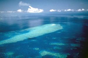 Flug Heart Reef