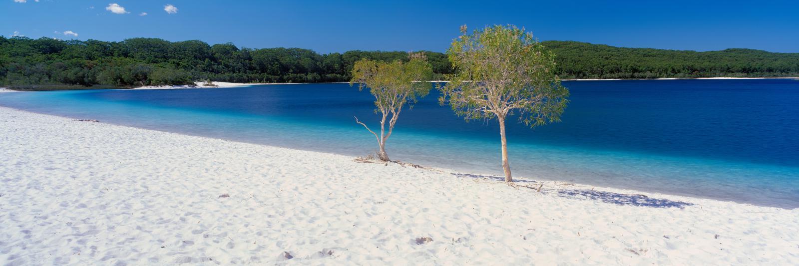 Fraser Island Lake Mckenzie Reise