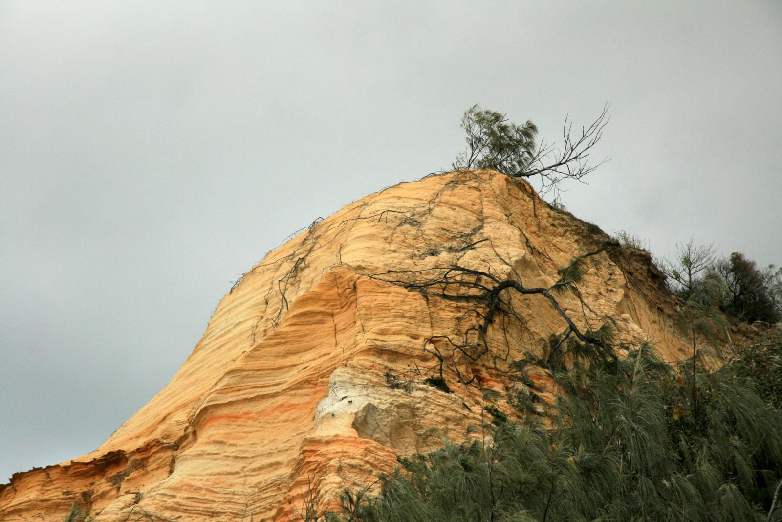Fraser Island Pinnacles