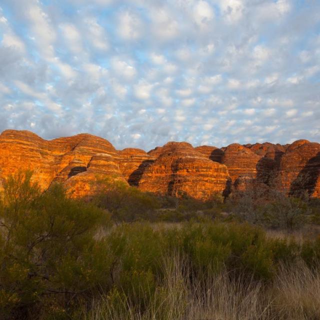 Purnululu Nationalpark in West Australien