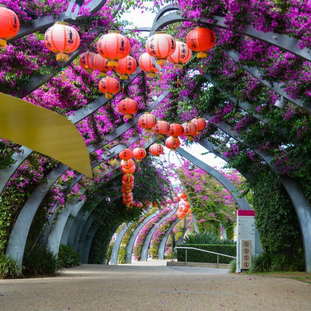 Die schönsten Events in Brisbane